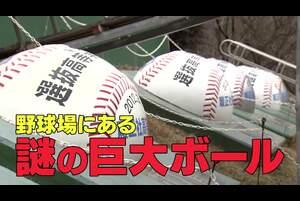 【2020年センバツ出場校紹介】履正社(大阪) 「野球場にある謎の巨大ボール」編