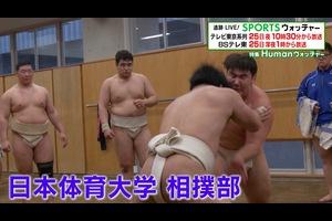 """【追跡LIVE!SPORTSウォッチャー】<br /> テレビ東京系列 4月25日 (土)夜10時30分 ※BSテレ東 深夜1時<br /> <br /> 今週のHumanウォッチャーは、 角界へ数多くの力士を輩出している日本体育大学相撲部。<br /> <br /> 大学屈指の実力を誇る相撲部を支えているのは齋藤一雄監督。<br /> <br /> 部員は49人。中でも注目はスーパールーキー中村。一年生ながら数多くのタイトルを獲得し、アマチュア相撲界の話題をさらっている。<br /> <br /> そして筋肉隆々の軽量級選手たちの活躍も見逃せない。<br /> <br /> 彼らの最大の目標は""""インカレ""""。ライバル決戦の行方は?<br /> <br /> ■追跡LIVE!SPORTSウォッチャー<br /> 月~金曜夜11時58分/土曜夜10時30分/日曜夜10時54分<br /> BSテレ東:土曜深夜1時/日曜深夜1時45分<br /> 【MC】<br /> ビビる大木<br /> 【コメンテーター】<br /> 中畑清<br /> https://www.tv-tokyo.co.jp/sportswatcher"""