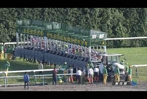 【GⅠレース】菊花賞 10/25(日) 京都競馬場
