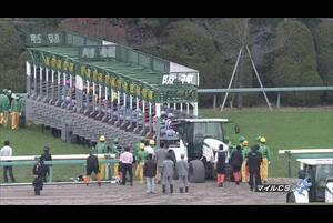 【GⅠレース】マイルチャンピオンシップ 11/22 (日) 阪神競馬場