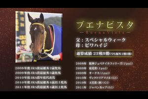 9月21日(祝・月)は、新型コロナウイルス感染症の影響によりご不便をおかけしている中にあっても中央競馬をご愛顧いただいているお客様に対し、感謝の気持ちをお伝えする日として、「JRAアニバーサリー」を実施いたします。同日に実施される「2010メモリアル ブエナビスタカップ」にちなみ、同馬の生涯を振り返ります。