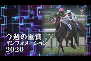 【今週の重賞インフォメーション】スワンS他 10/31(土)