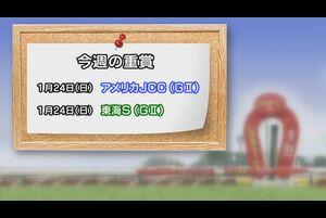 【今週の重賞インフォメーション】アメリカジョッキークラブカップ他 1/24(日)