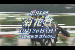 【GIレース出走予定馬紹介】菊花賞 10/25 京都競馬場