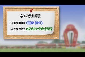 【今週の重賞インフォメーション】根岸S他 1/31(日)