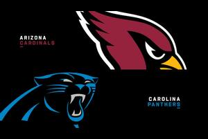 【NFL2020年第4週】2勝1敗のカーディナルスと2勝目を狙うパンサーズが激突