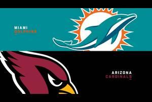 【NFL2020年第9週】連勝中のカーディナルスとドルフィンズが対戦、4連勝を飾るのは?