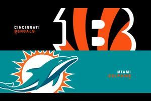 【NFL2019年第16週】ドルフィンズが本拠地でベンガルズと対戦