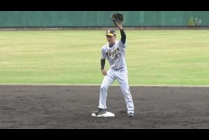2月1日から始まった阪神タイガース安芸キャンプで、ドラフト7位ルーキー髙寺望夢が守備練習を行なった。