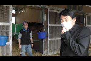 【桜花賞(日曜=12日、阪神芝外1600メートル)】キズナ産駒の3歳牝馬はマルターズディオサだけじゃない。フィオリキアリがアネモネSで見せた末脚は、阪神外回りへの適性を大いに感じさせるものだった。土壇場で出走権を獲得。そのまま一等星に輝くことができるか(1日撮影)。
