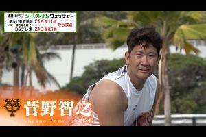 """「追跡LIVE!SPORTSウォッチャー」テレビ東京系列 11月21日(土)夜11時/BSテレ東 深夜1時放送<br /> <br /> 巨人のエース・菅野智之(31)。苦しんだ昨シーズンを乗り越えた末に、今年見せた圧倒的な活躍。その裏にあった、エースだからこそ知る""""恐怖""""との戦いとは。<br /> <br /> 菅野「やっぱり怖さがあるんですよ。今まで築き上げてきたものが壊れてしまうっていうのも怖いしね」<br /> <br /> 【追跡LIVE!SPORTSウォッチャー】<br /> テレビ東京:月~金曜夜11時58分/土曜夜11時/日曜夜10時54分<br /> BSテレ東:土曜深夜1時/日曜深夜1時45分<br /> <br /> Twitter:https://twitter.com/TVTOKYO_sports<br /> Instagram:https://www.instagram.com/sportswatcher/<br /> Facebook:https://www.facebook.com/tx.sportswatcher<br /> <br /> 【テレビ東京スポーツ】<br /> 卓球、ソフトボール、競馬、野球、サッカー などメジャー・マイナー競技のスポーツ情報を発信。テレビ東京 独自の取材、現役選手・監督の貴重なインタビューなども随時掲載。<br /> <br /> ▼チャンネル登録よろしくお願いします▼<br /> https://www.youtube.com/tvtokyo_sports"""