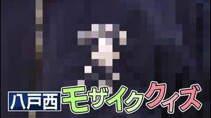 【八戸西(青森)】スペシャルコンテンツ 「モザイククイズ」編