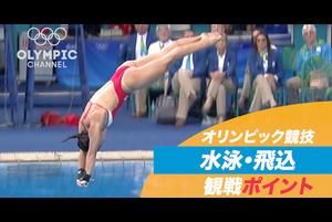 オリンピック競技 観戦ポイント 水泳・飛込