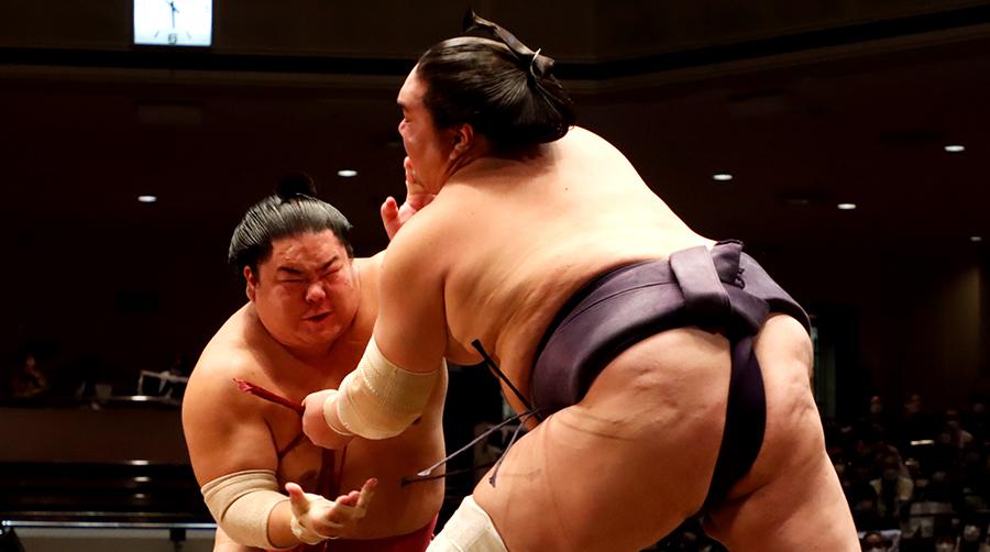 【相撲協会公式・今日の一番】九日目 大栄翔-横綱・照ノ富士