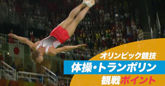 オリンピック競技 観戦ポイント 体操・トランポリン