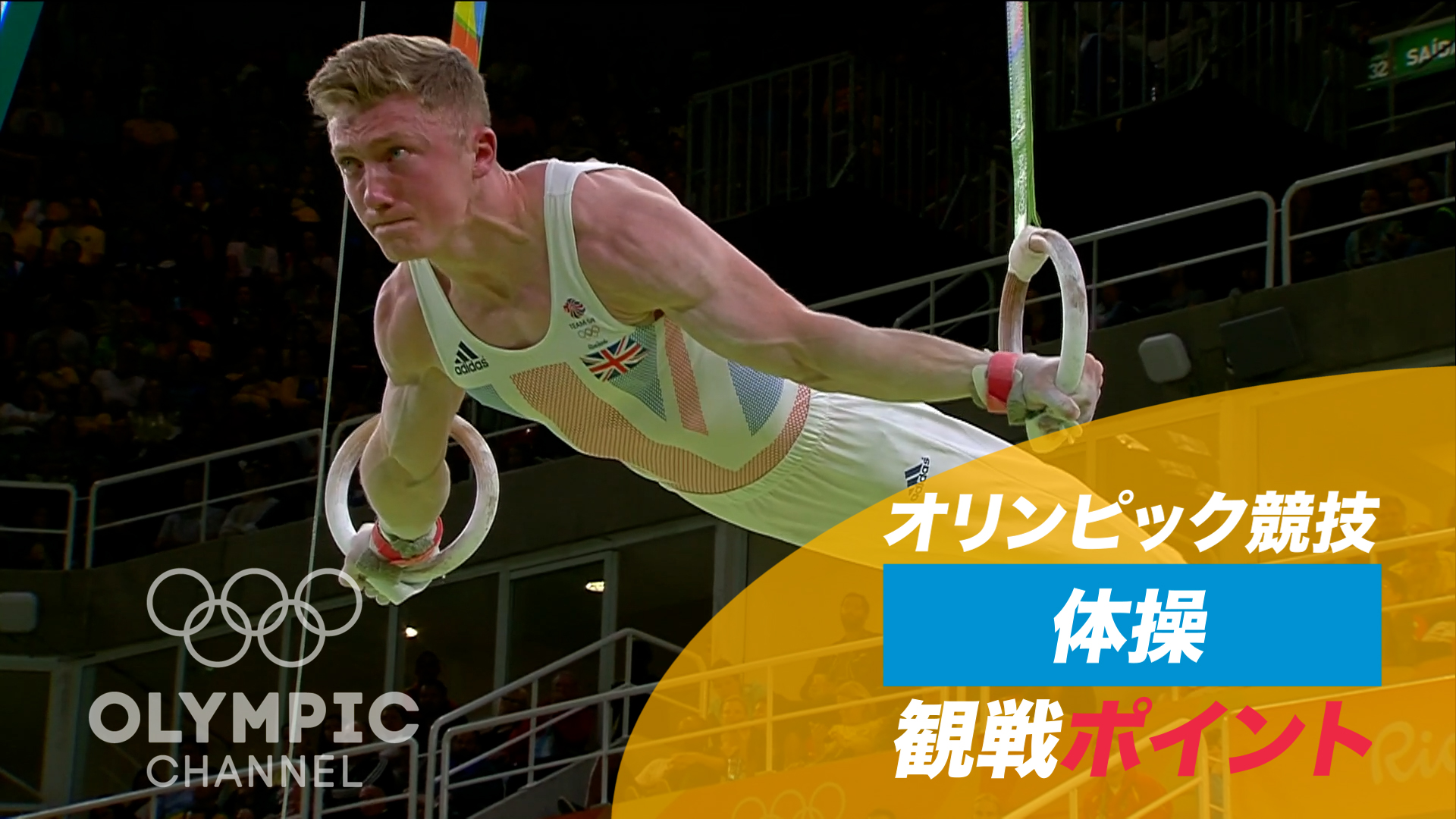 オリンピック競技 観戦ポイント 体操