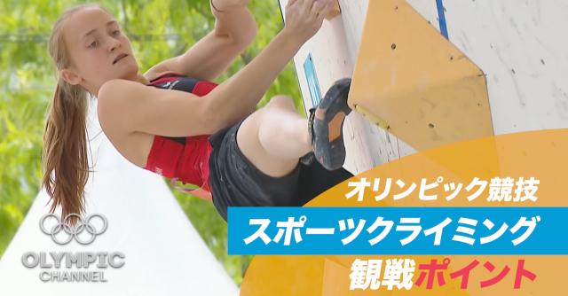 オリンピック競技 観戦ポイント スポーツクライミング