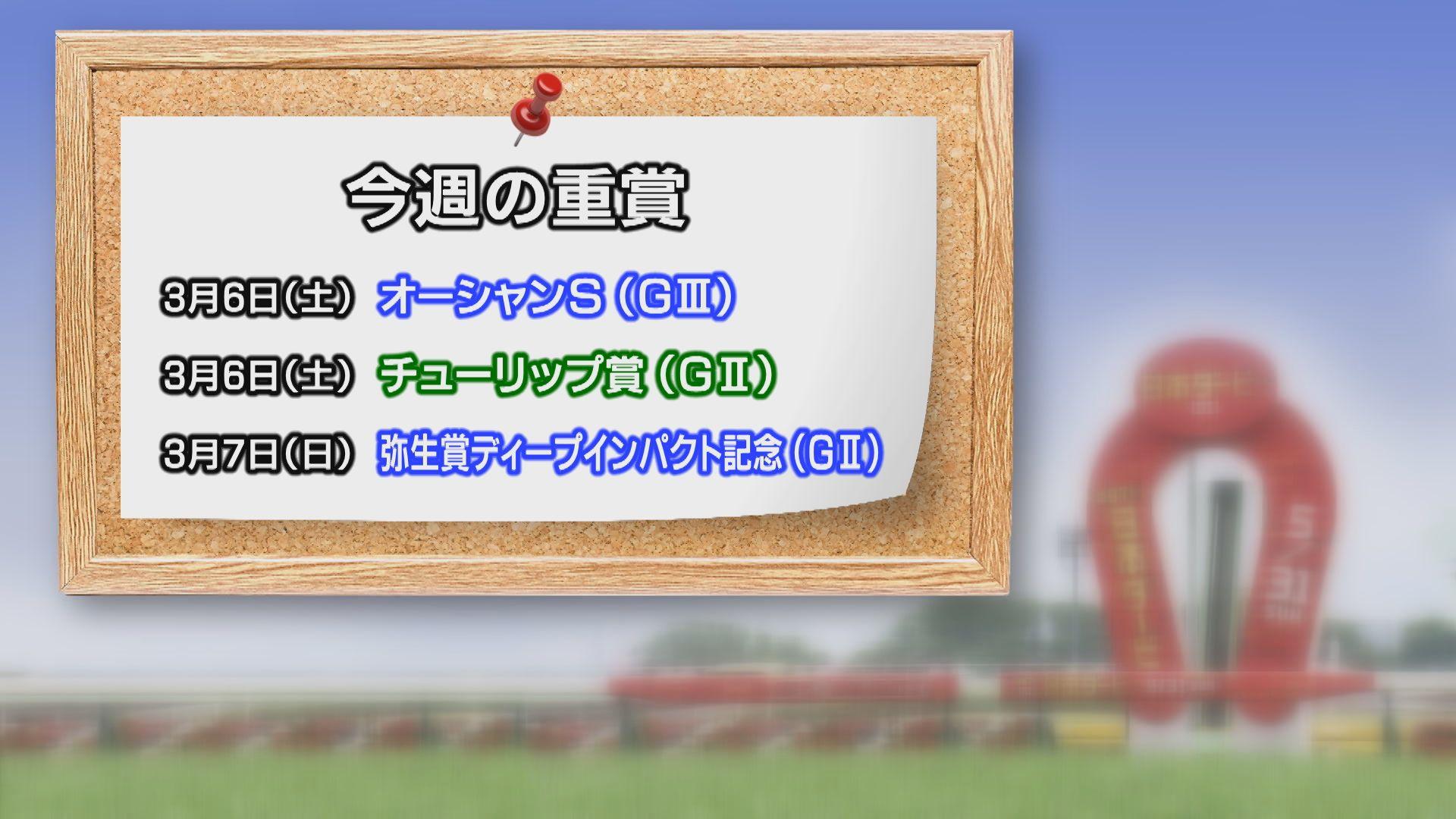 【今週の重賞インフォメーション】弥生賞ディープインパクト記念他 3/6(土)・7(日)