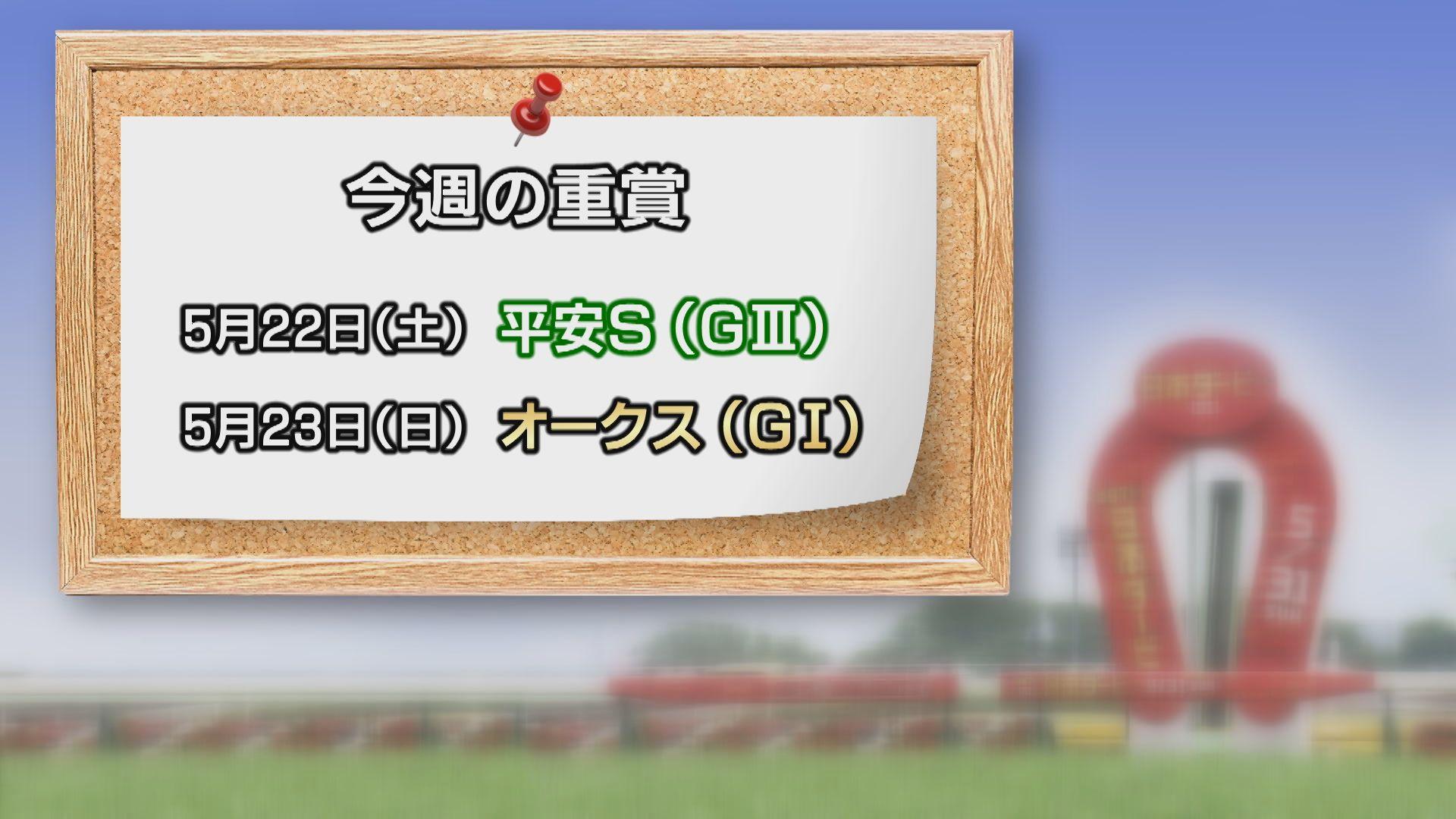 【今週の重賞インフォメーション】平安S 5/22(土)