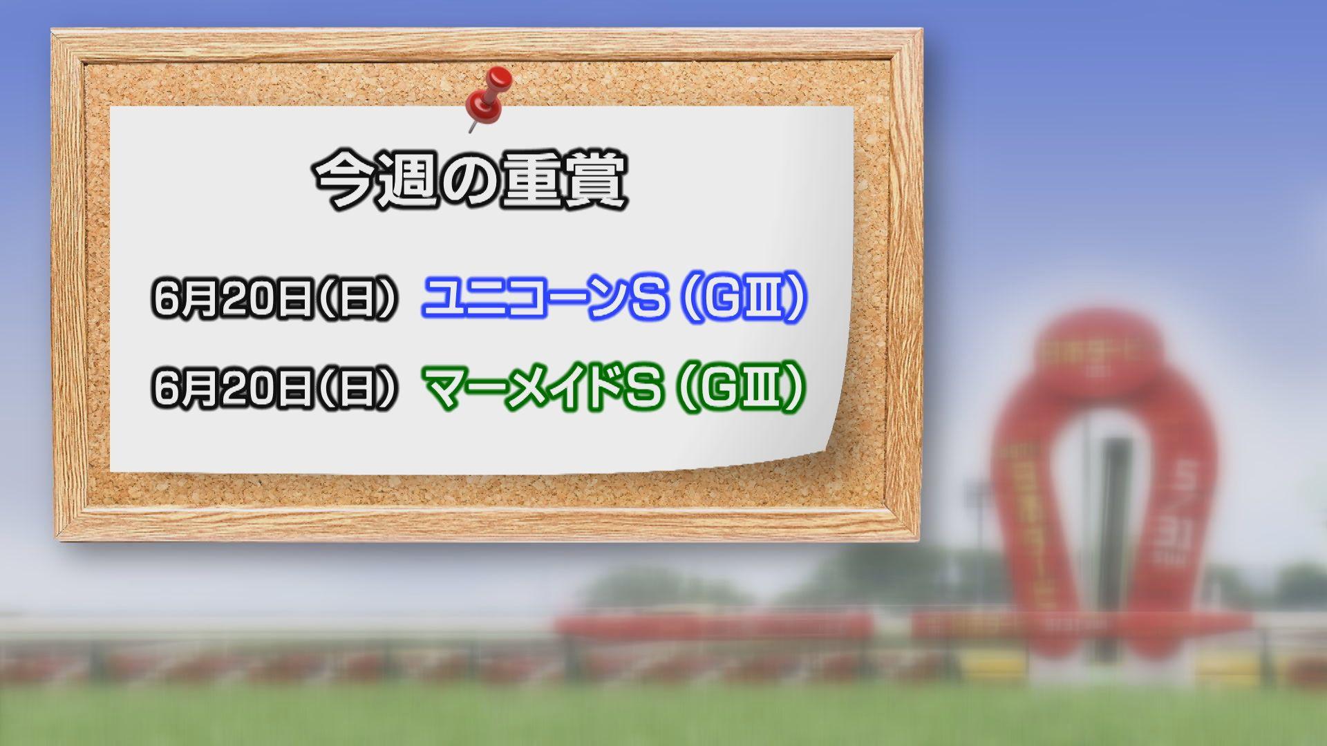 【今週の重賞インフォメーション】ユニコーンS他 6/20(日)