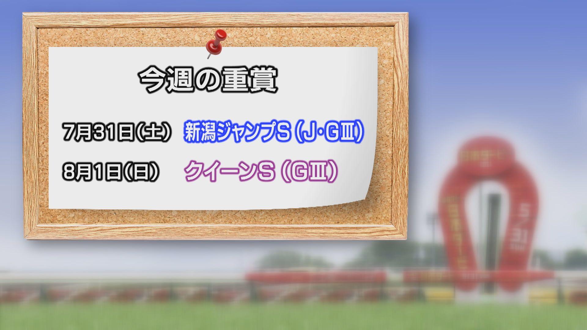 【今週の重賞インフォメーション】クイーンS 8/1(日)