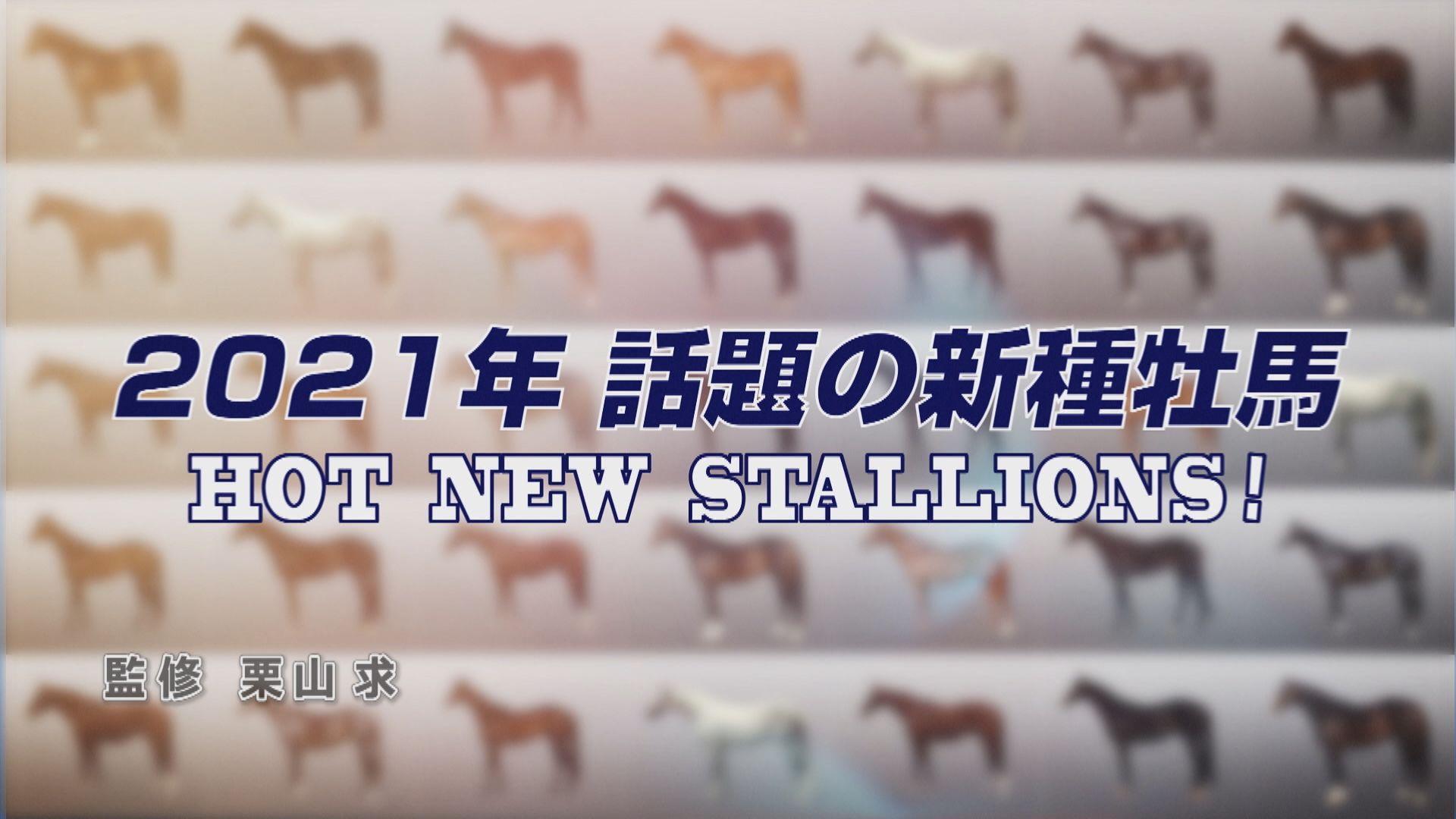 2021年新種牡馬紹介