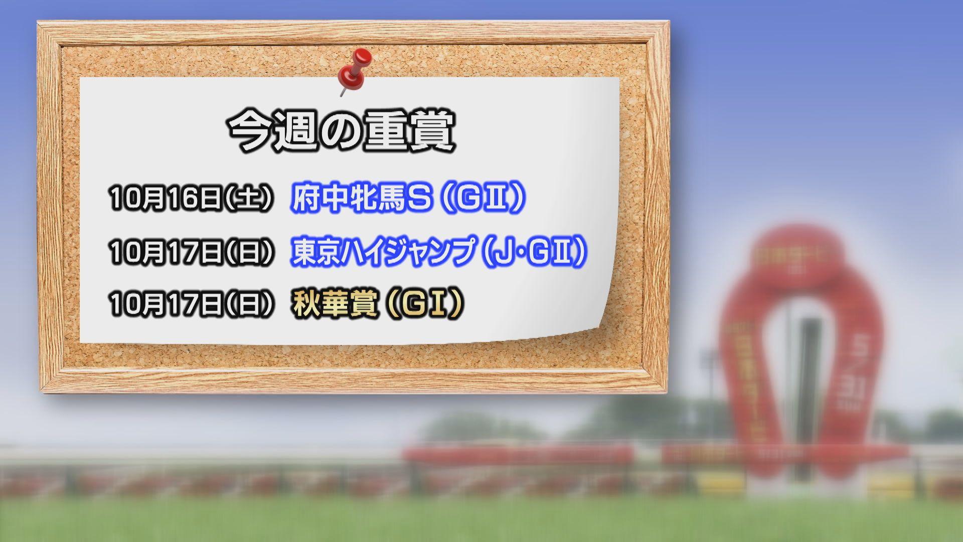 【今週の重賞インフォメーション】アイルランドT府中牝馬S 10/16(土)