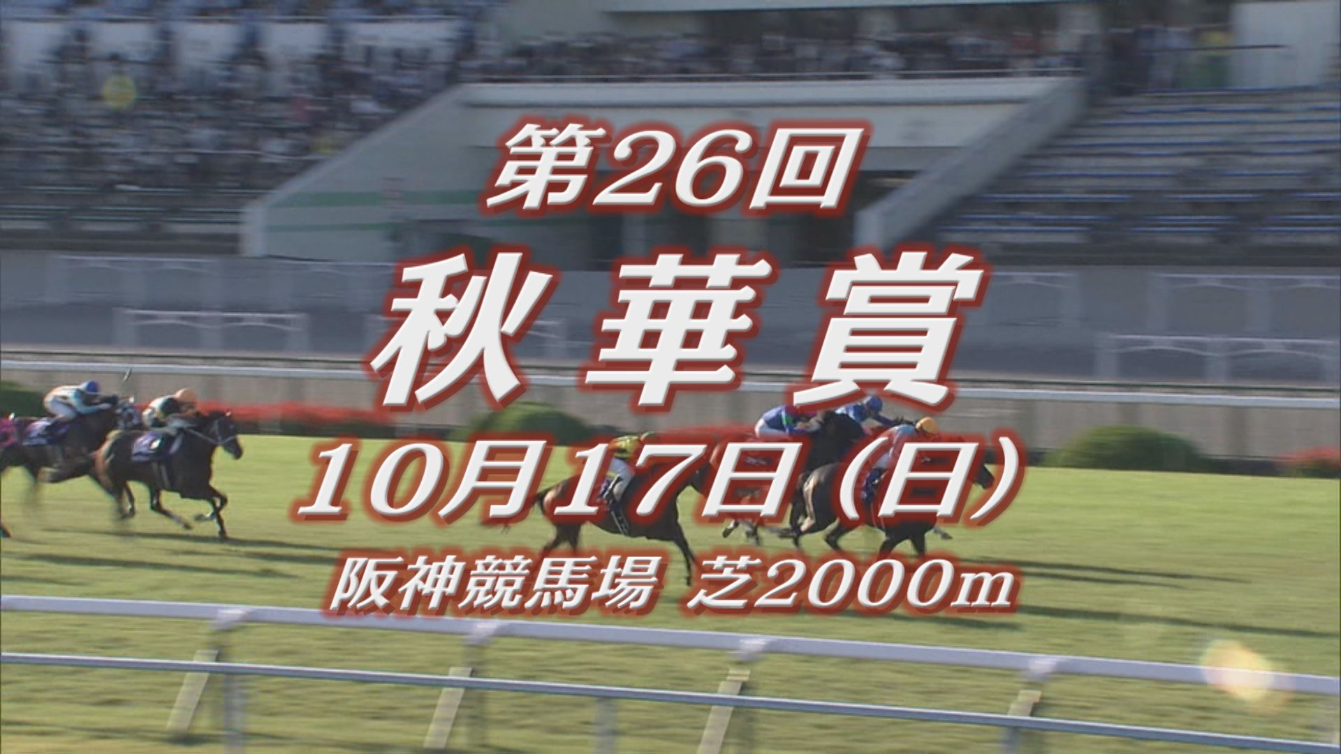 【GIレース出走予定馬紹介】秋華賞 10/17 阪神競馬場