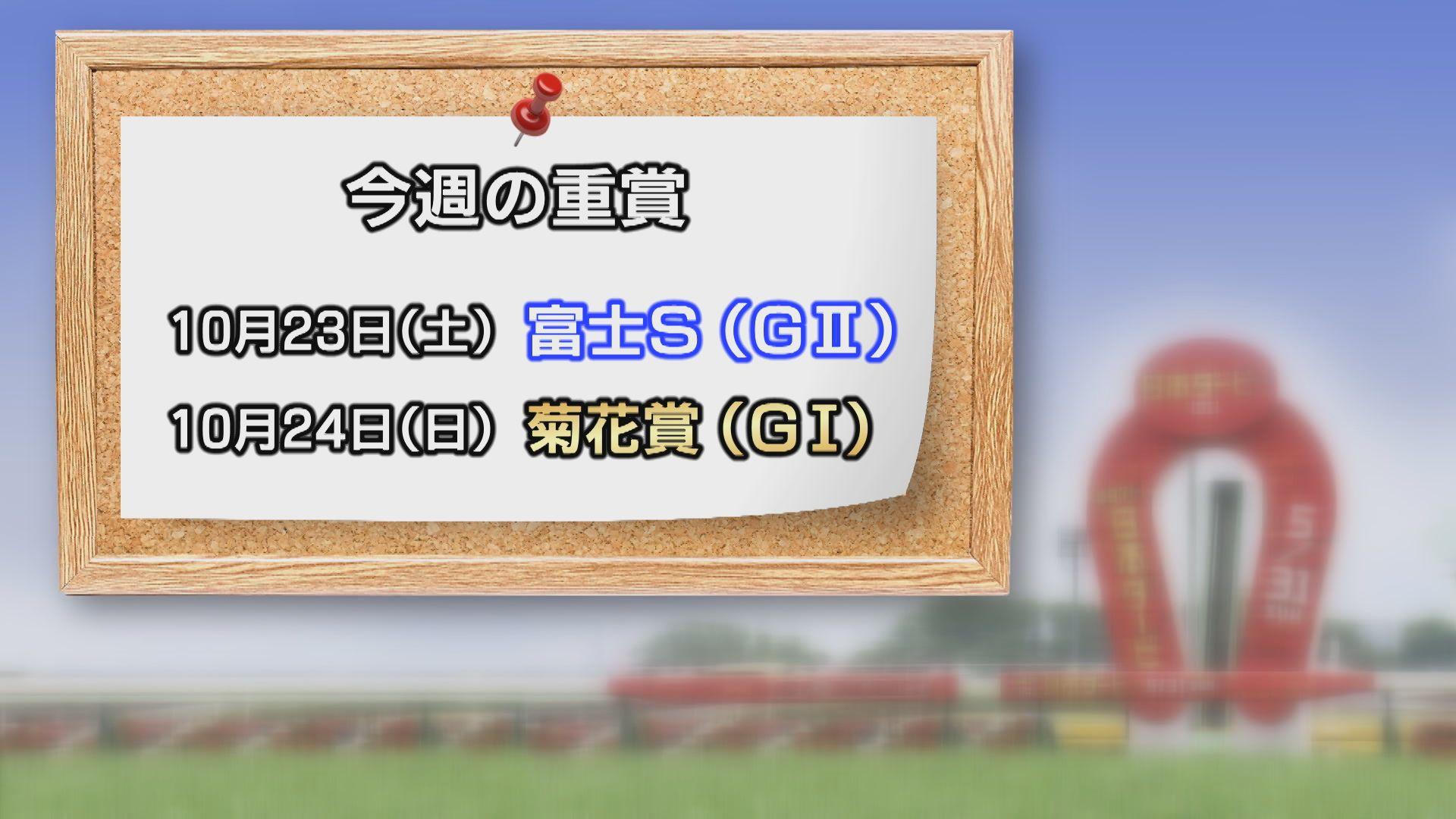 【今週の重賞インフォメーション】富士S 10/23(土)