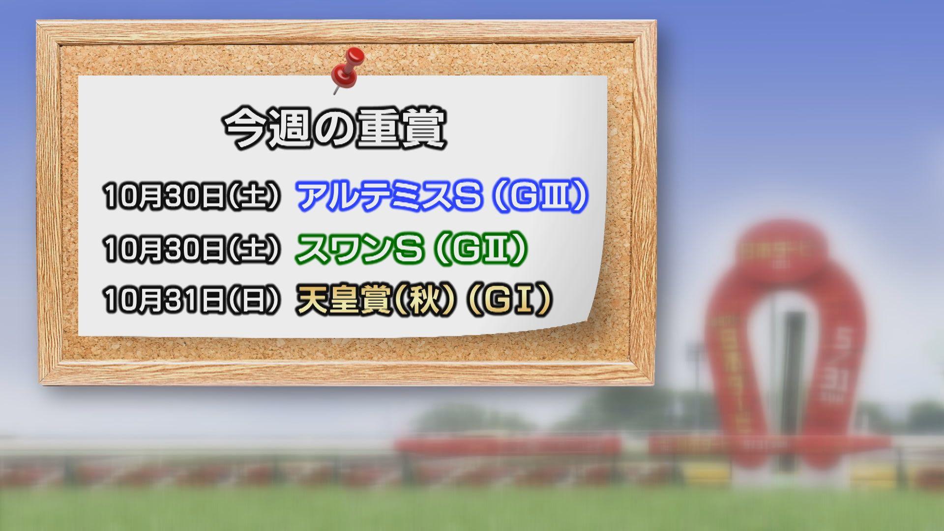 【今週の重賞インフォメーション】スワンS他 10/30(土)