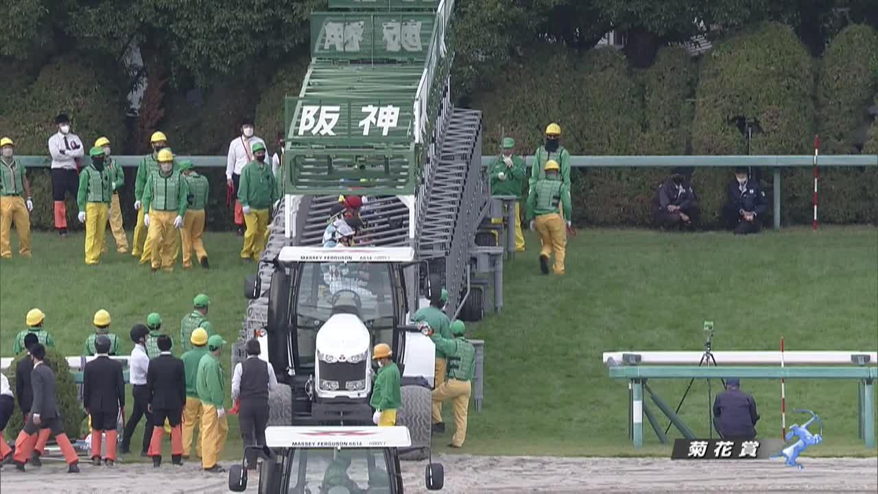 【GⅠレース】菊花賞 10/24(日) 阪神競馬場