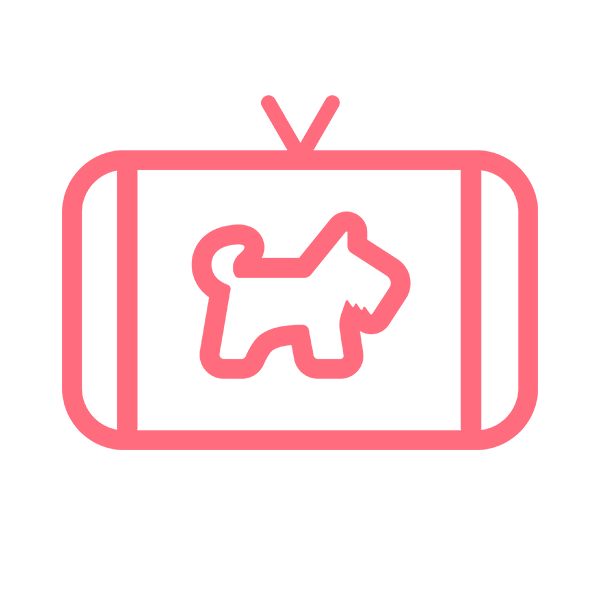 わんちゃんホンポ TV