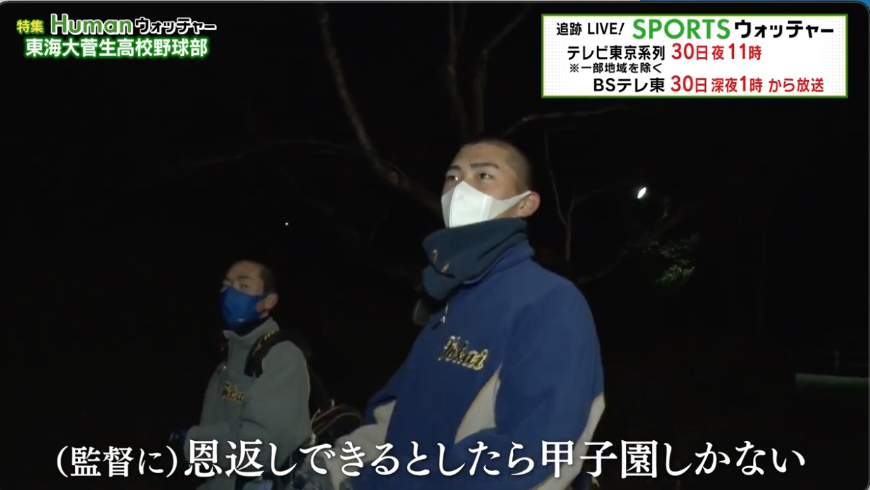 東海大菅生高校野球部、甲子園にかける想い「監督に恩返しできるとしたら、甲子園しかない」/Humanウォッチャー