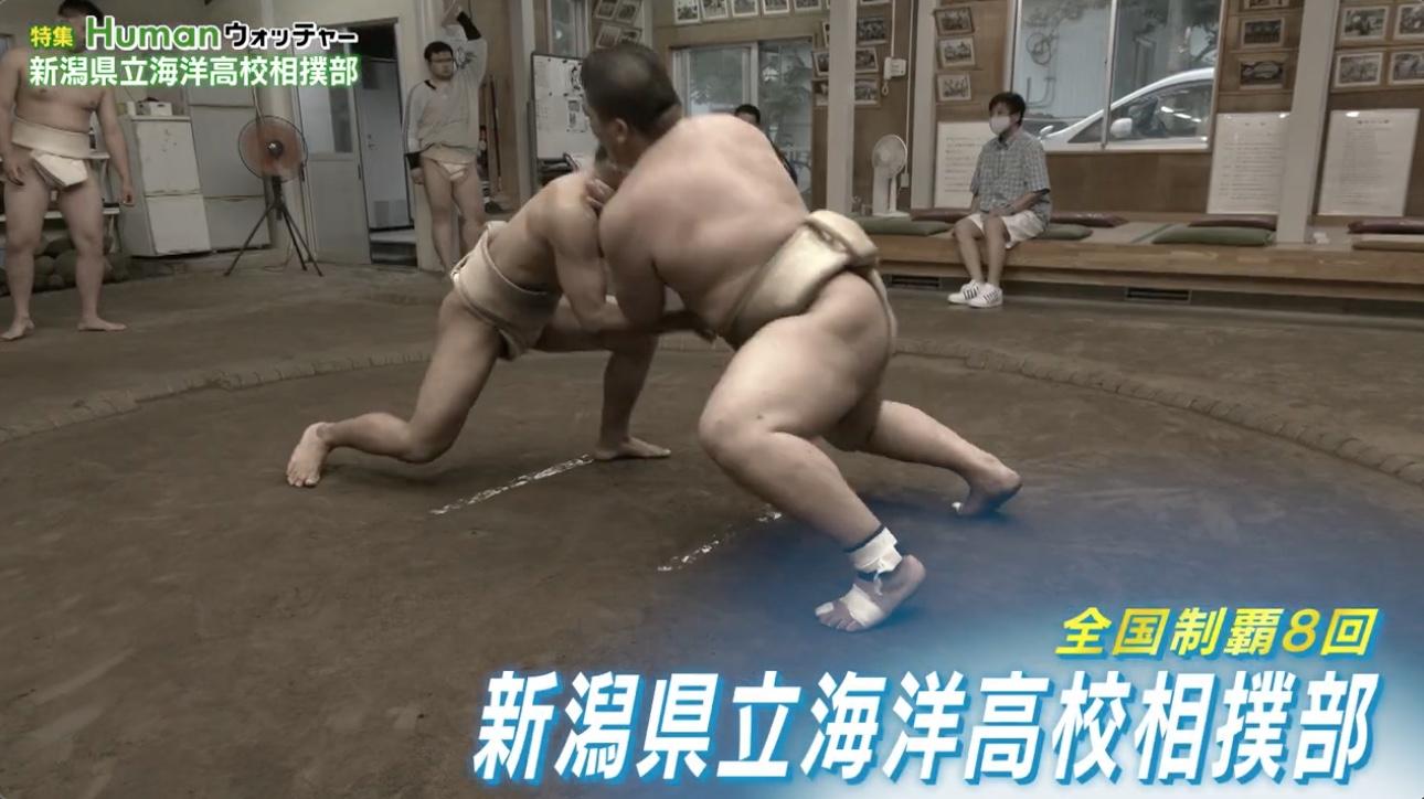 全国制覇8回・海洋高校相撲部 汗と涙の夏に密着/Humanウォッチャー