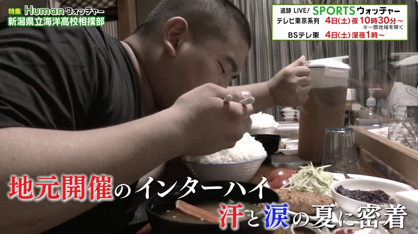 新潟県立海洋高校相撲部 地元開催のインターハイを目指す夏に密着/Humanウォッチャー